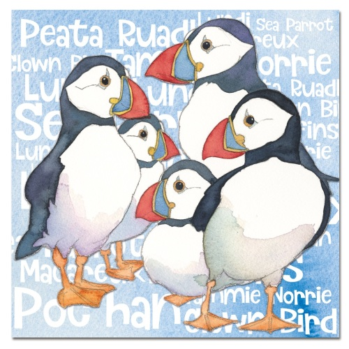 Puffins Names Card