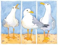 3 Seagulls Card