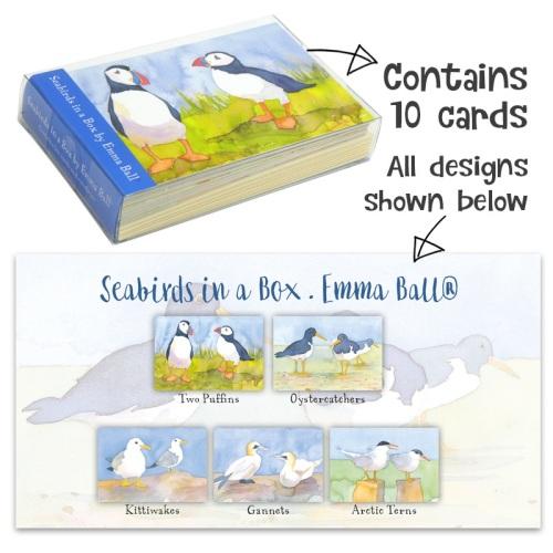 Seabirds Notecard Set