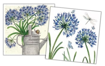 Agapanthus Mini Card Pack
