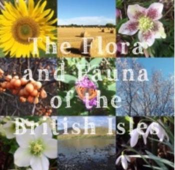 1. Flora and Fauna Yarn Club 2021 - Months 7-9