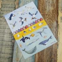 Sea Life Sticker Set