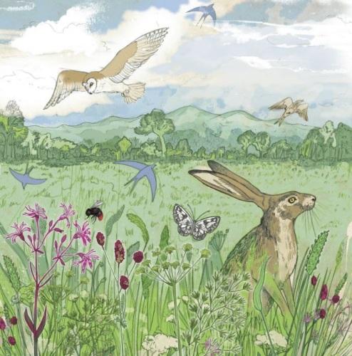 Meadow Greetings Card