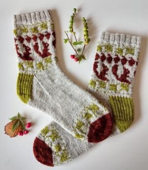 Little Acorn Sock Kit