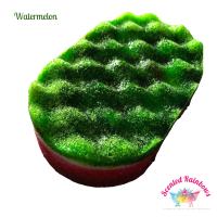 Watermelon Soap Sponge