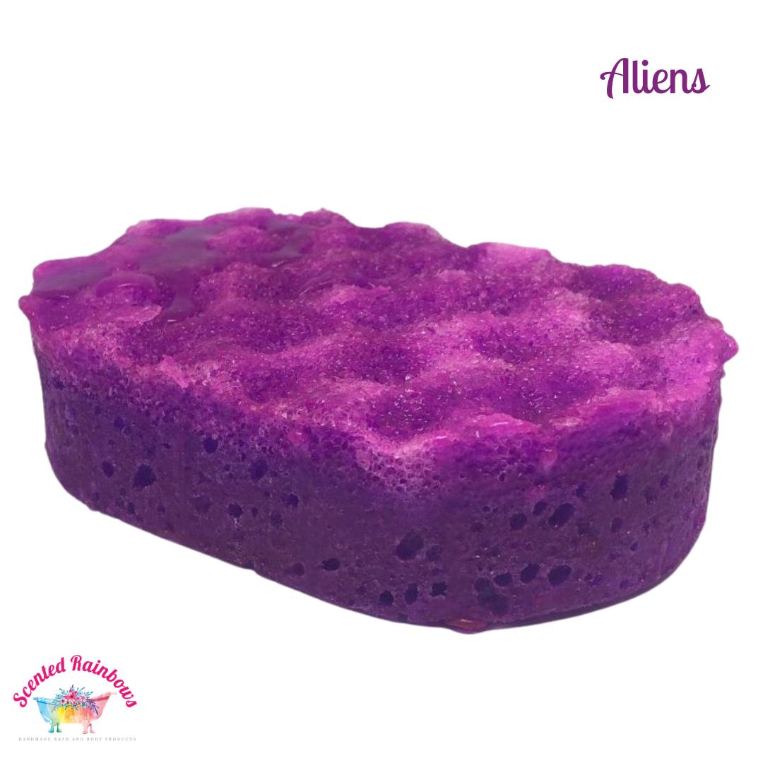 Alienne Soap Sponge
