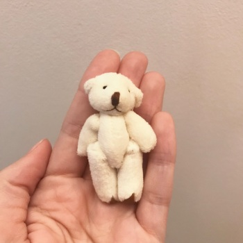 Mini Teddy Bear