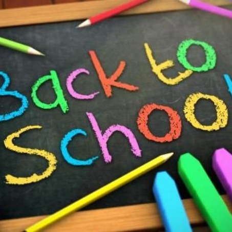 ABC School Bows