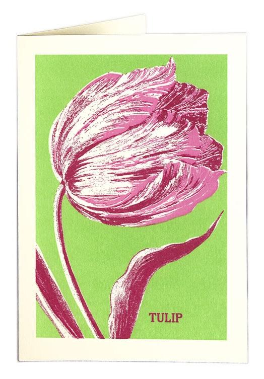 Archivist - Tulip