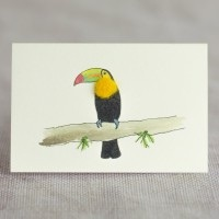 Penny Lindop Mini Card - Toucan
