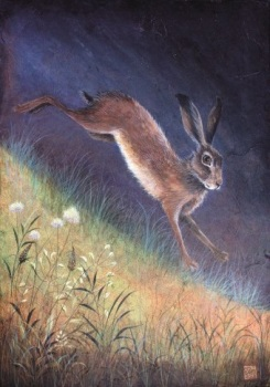 Mistletoe House: Jemima Jameson - Hare on the Bank