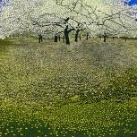 Mistletoe House: Phil Greenwood - Blossom