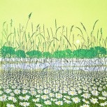 Mistletoe House: Phil Greenwood -