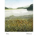 Mistletoe House: Phil Greenwood -