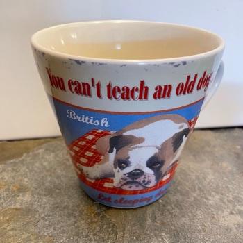 ECP Conical mug - Teach an old dog new tricks...