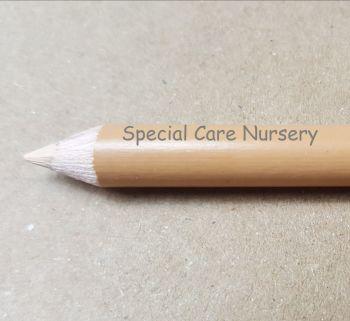 NewPrismacolor Premier® Soft Core Colored/Coloured Pencil - BEIGE