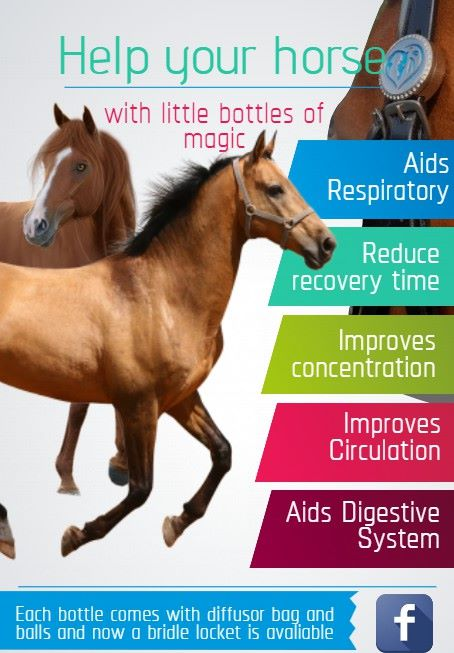 Natural Horse Products - PRE ORDER 4TH November