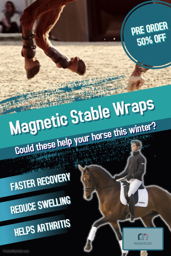 MagnoEase - Magnetic Stable Wraps
