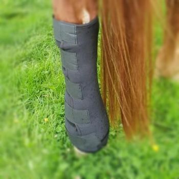 Magnetic Stable Wrap Boots