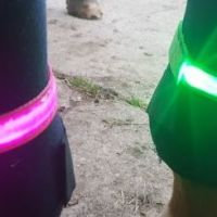 LUMA Horse Legs Lights sold in pairs PRE ORDER 20TH OCTOBER