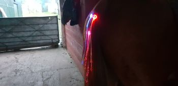 Tail lights x3 assorted