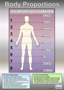 Body Proportions Poster - 594 x 841mm - Each