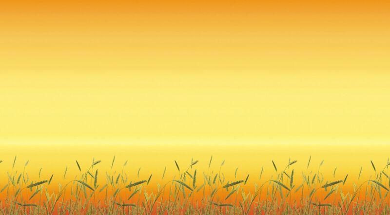 Fadeless Designs Sunset - 1218mm x 3.6m - Each