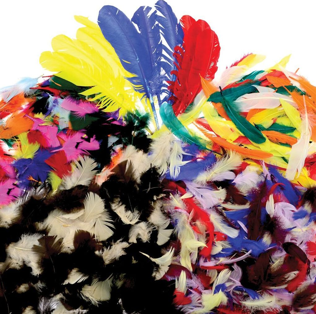 Feathers Bumper Class Pack - Assorted - Class Pack