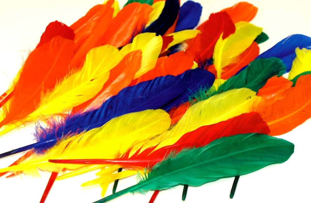 Duck Quills Feathers - Assorted - 18cm - 20g Bag