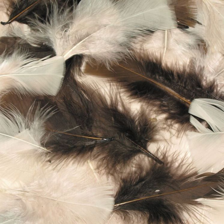 Natural Feathers - Assorted - 25g Bag