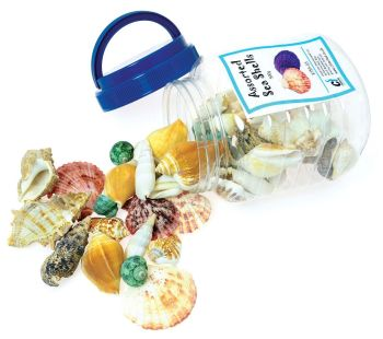 Bucket of Shells - Assorted - 500g Tub - Each