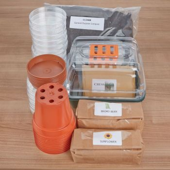Grow Your Own Plants Kit - Assorted - Per Kit