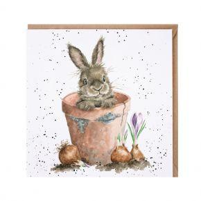 Wrendale Card- The Flower Pot