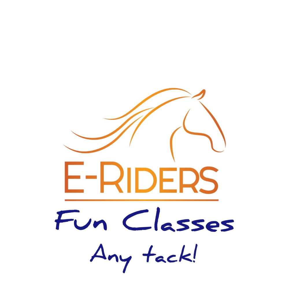 Ring E - Fun Classes
