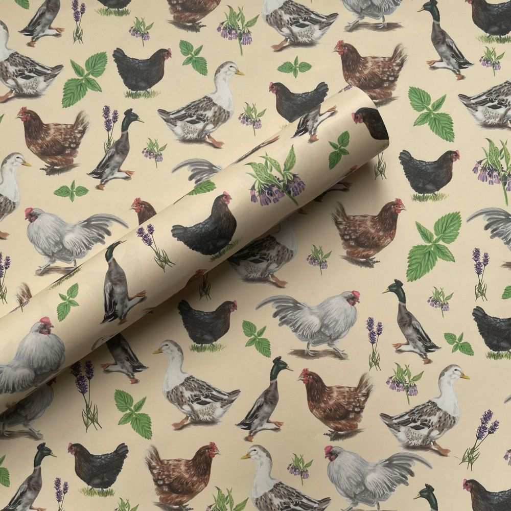 Chooks and Duck Gift Wrap