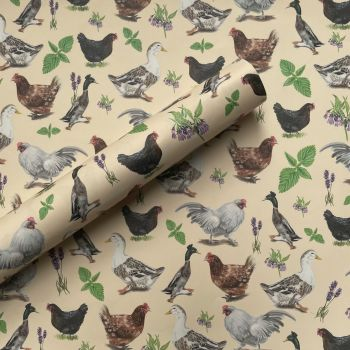 Chooks and Ducks Gift Wrap