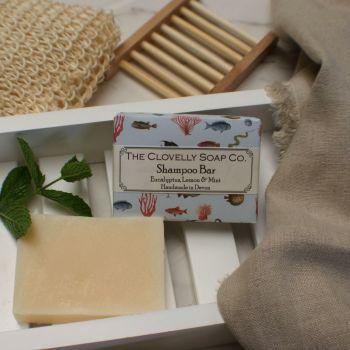 Eucalyptus, Lemon & Mint Shampoo Bar for Normal to Dry Hair