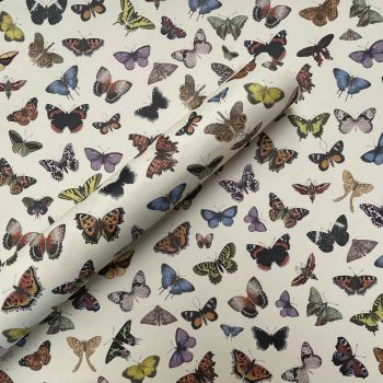 Hand Drawn Butterfly Gift Wrap
