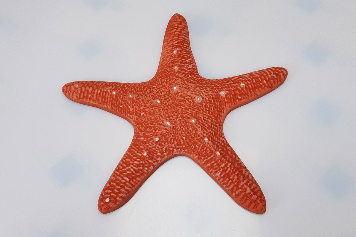 Starfish 3D Painted Foam Prop