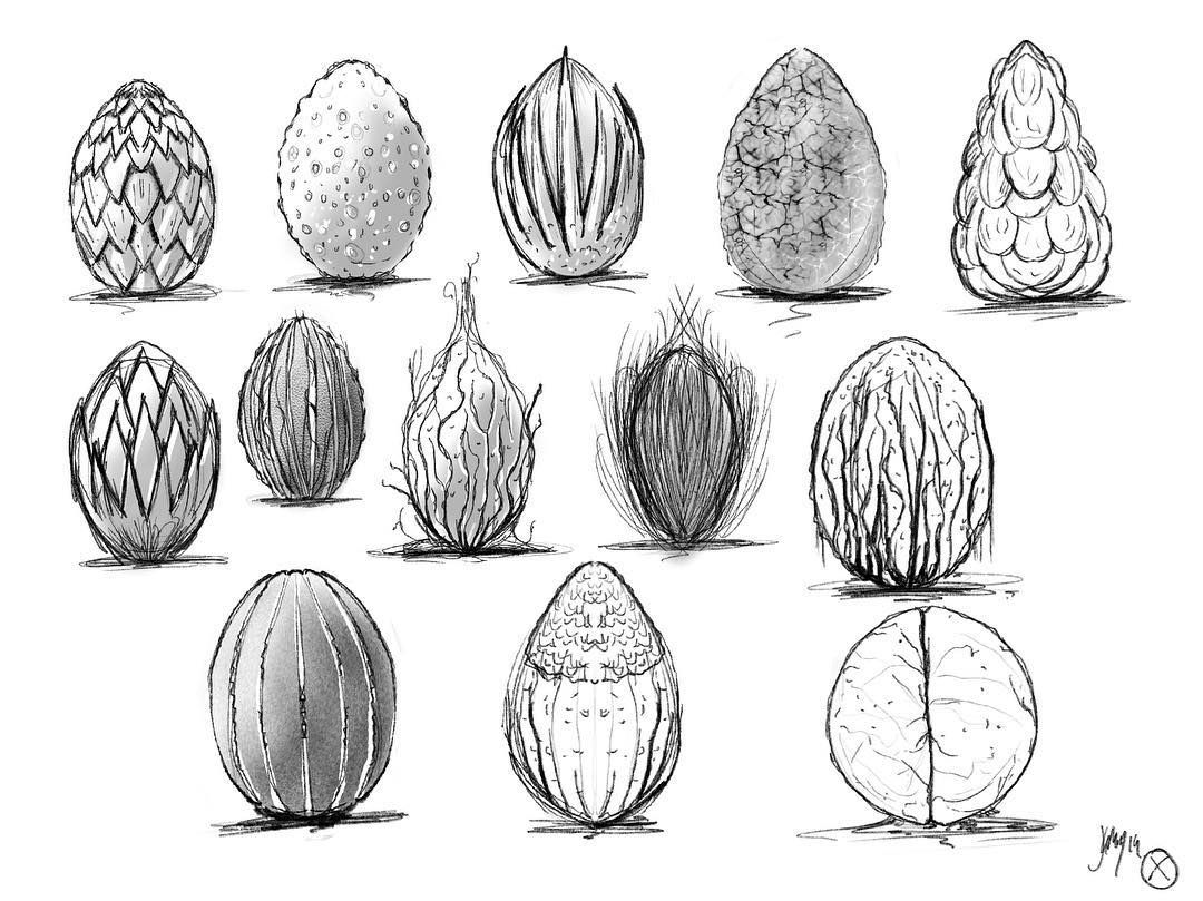 Alien Egg Design Sketches