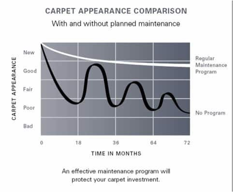 carpet cleaning comparison Carpet & Upholstery Cleaning Lancashire