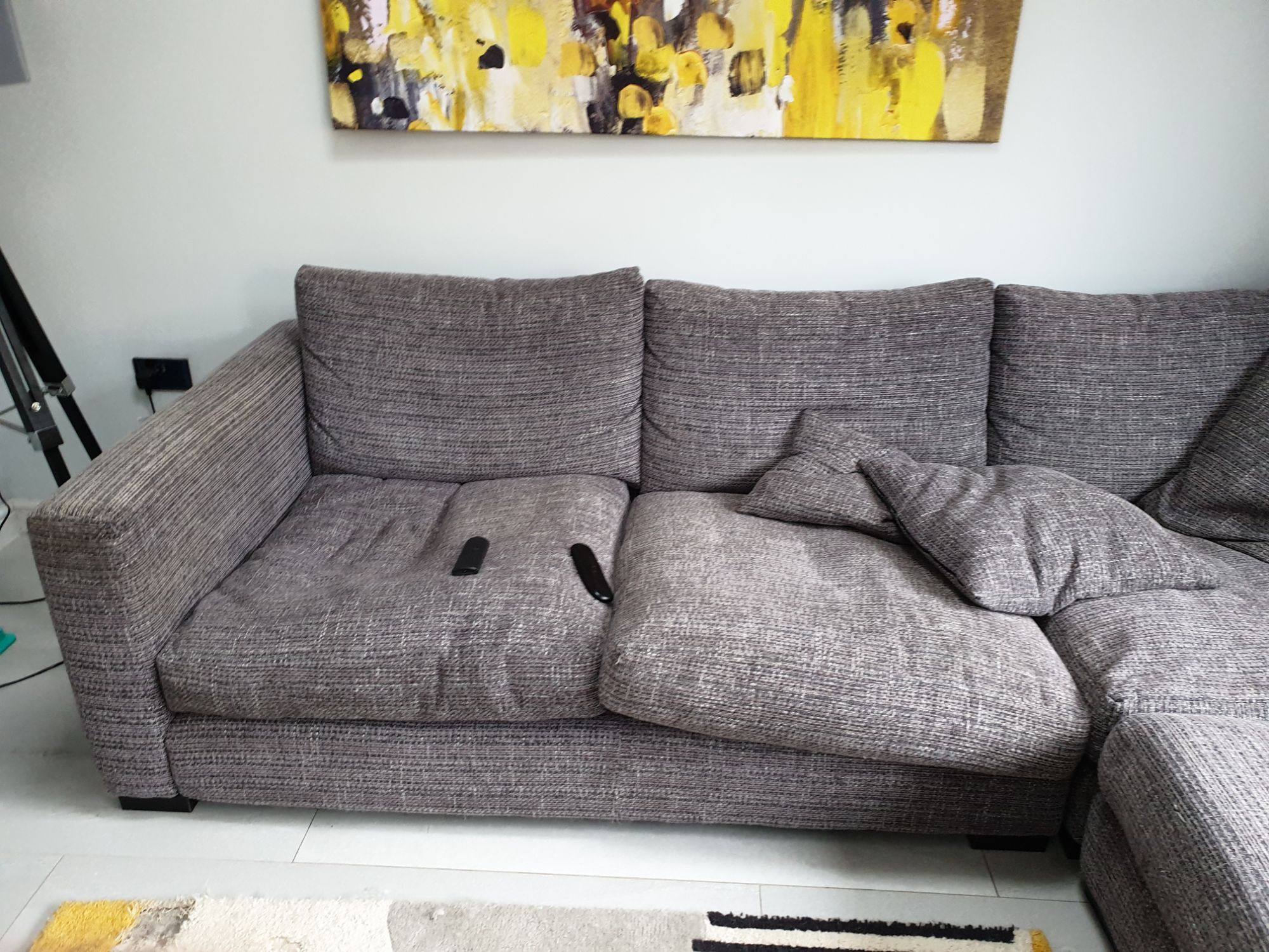 soiled by dog sofa prior to upholstery cleaning.jpg