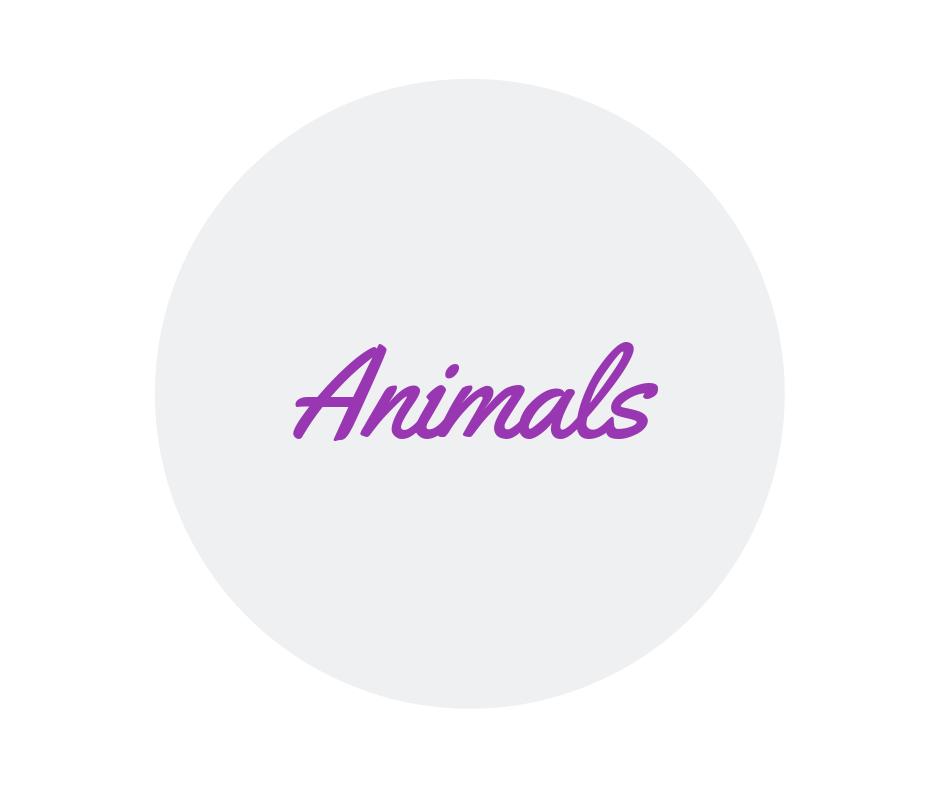 keepsake bears and other animals