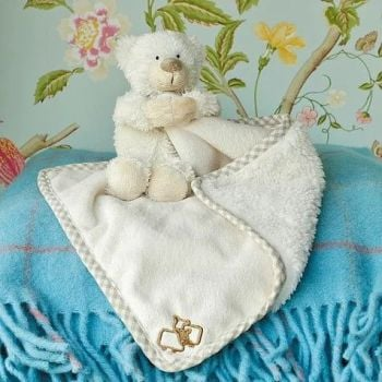 Bear toy soother