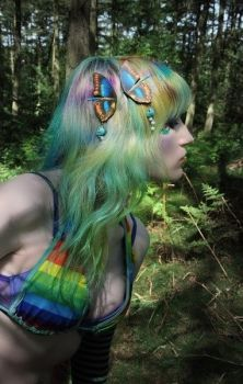 Dreamy Wings Butterfly Hair Clip