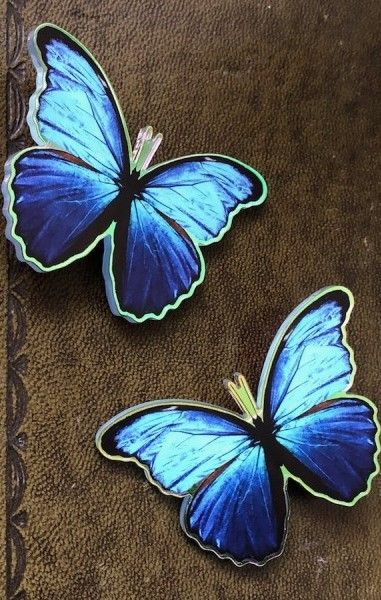 Morpho Butterfly Hairclips