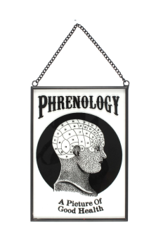 Glass Phrenology Sign