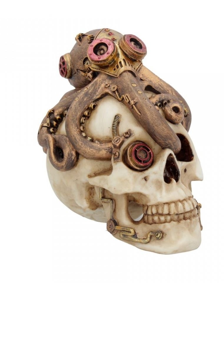 Octo Craniotomy Skull Figure