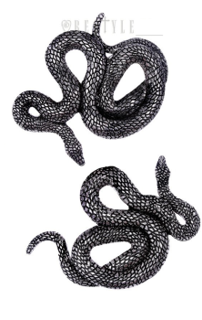 Pair of Serpentine Clips