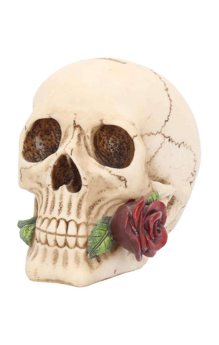 Argentine Skull RRP £19.99